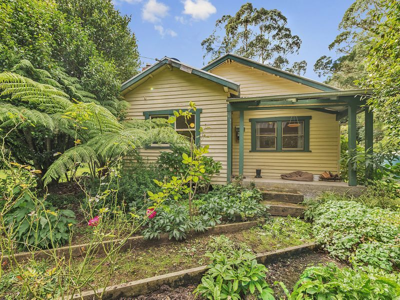 860 Barham River Road, Apollo Bay VIC 3233, Image 2