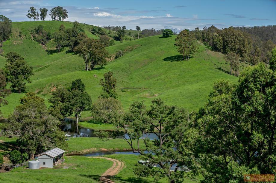 185 Plantation Lane, Cedar Party NSW 2429, Image 0