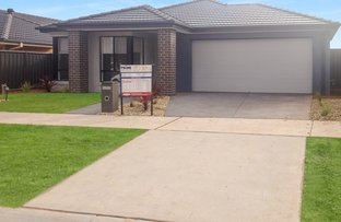 Picture of 7 Daisy Street, Huntly VIC 3551