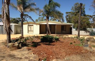 Picture of 245 Edgar Lewis Place, Moora WA 6510
