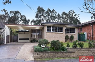 Picture of 37 Peachtree Avenue, Constitution Hill NSW 2145