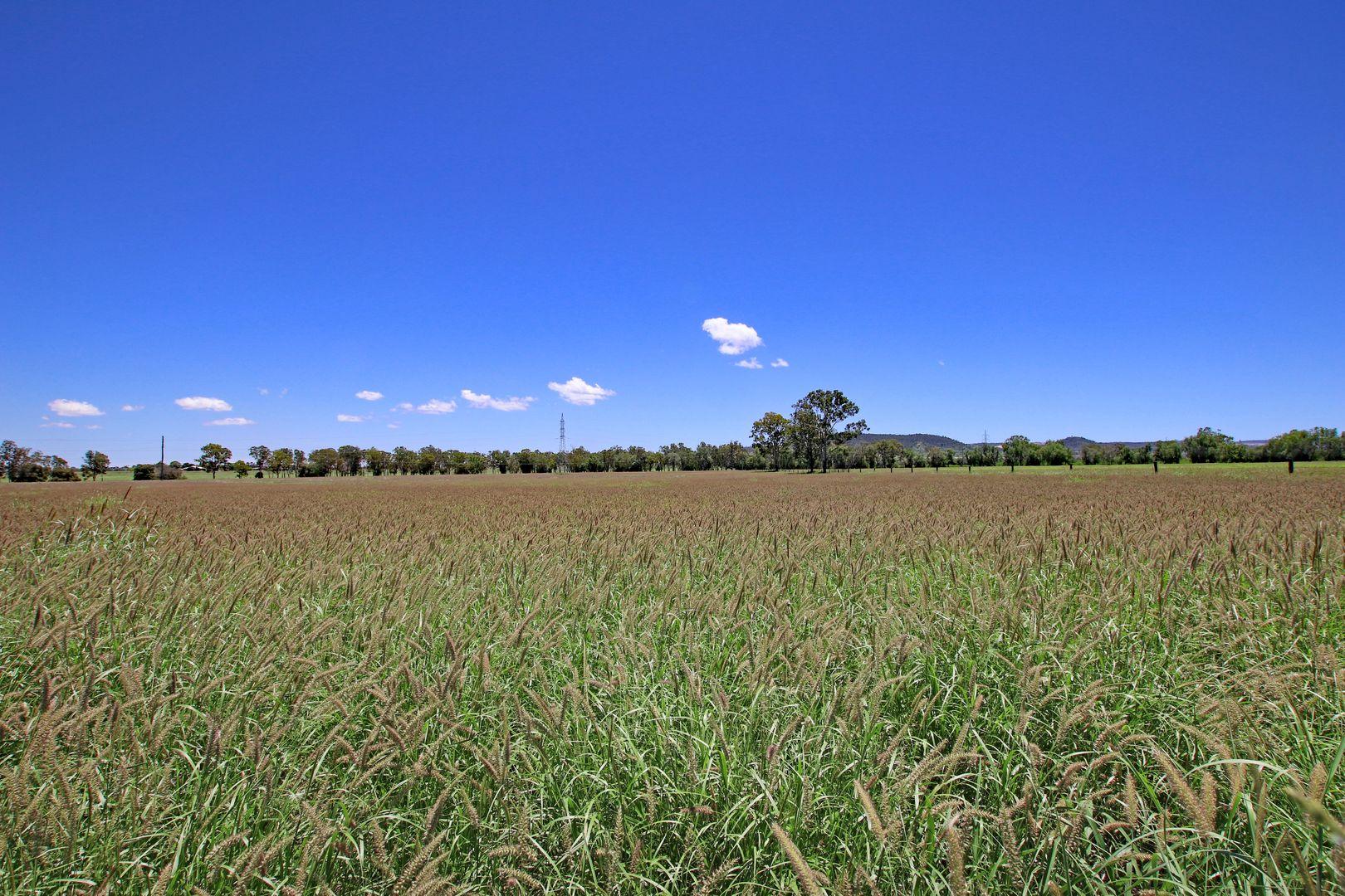 225 Biloela Callide Road, Mount Murchison QLD 4715, Image 0