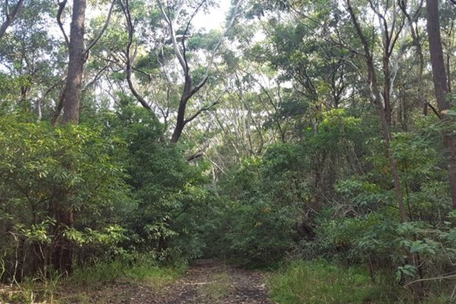 Picture of Lot 1 Denmark Street, WOMBARRA NSW 2515