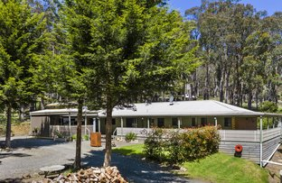 Picture of 143 Dales Creek Avenue, Dales Creek VIC 3341