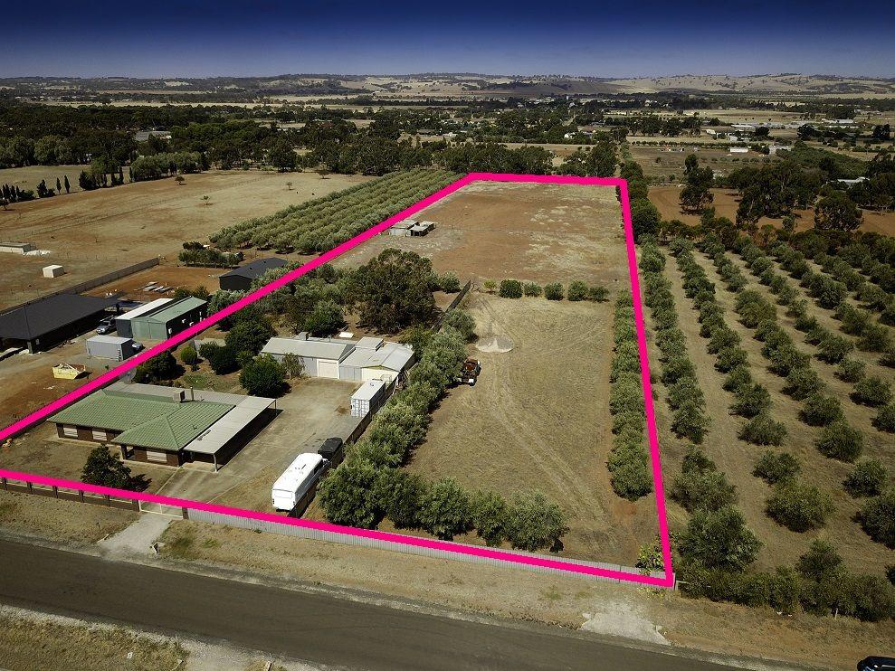 80 Griffith Road, Kudla SA 5115, Image 0