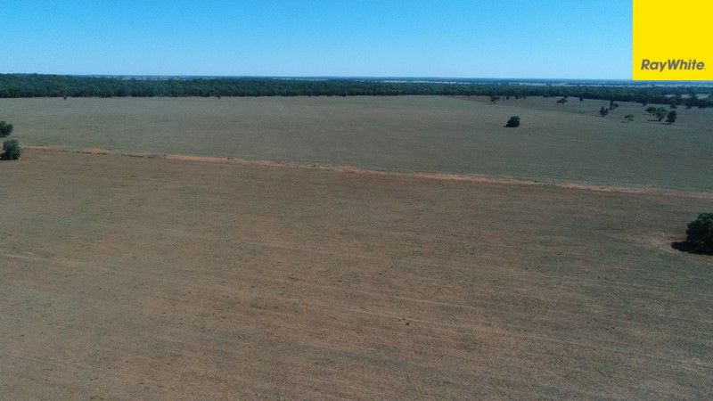 The Ranch Grassmere Road, Condobolin NSW 2877, Image 0