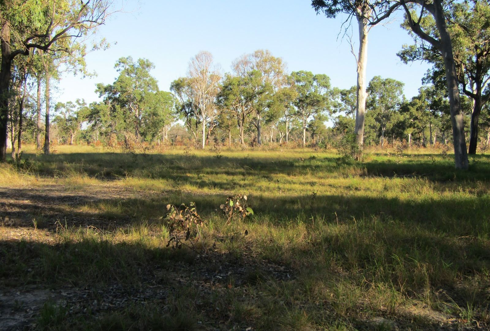 Lot 54 Isis St, Buxton QLD 4660, Image 2
