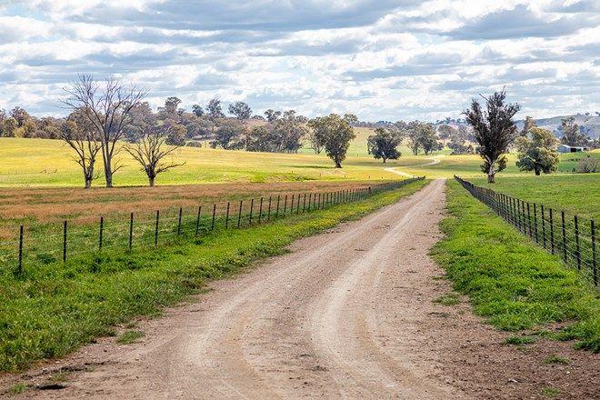 Picture of 177 Toonga Settlement Road, TARCUTTA NSW 2652