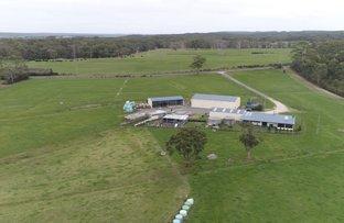 Picture of 210 West Montagu Road, West Montagu TAS 7330