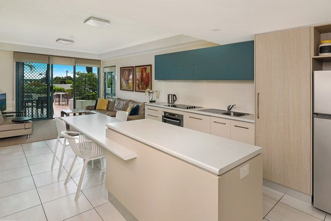 Picture of 7/31-33 Cotton Tree Parade, MAROOCHYDORE QLD 4558