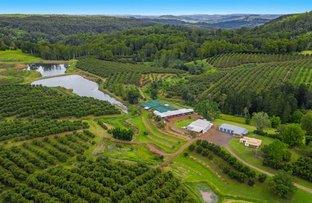 Picture of 578 Mountain Top Road, Mountain Top NSW 2480