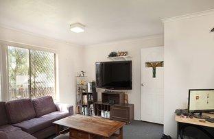 Picture of 24 Jones Street, Mooloolah Valley QLD 4553