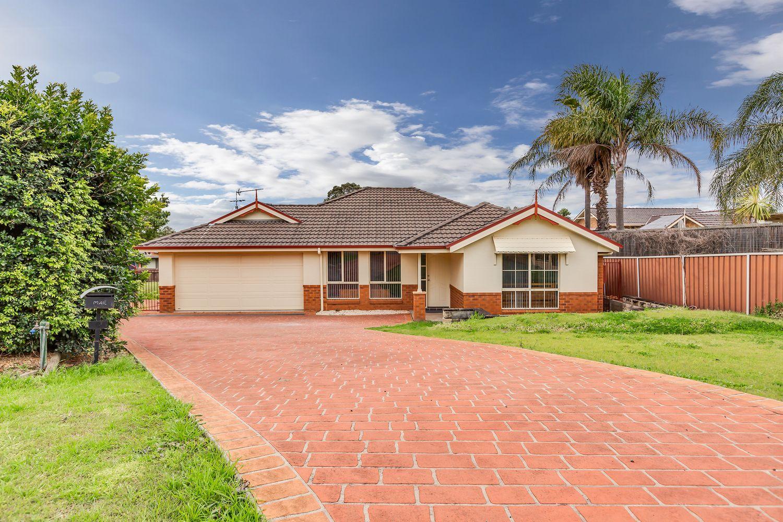 9 Centenary Close, Bolwarra Heights NSW 2320, Image 0