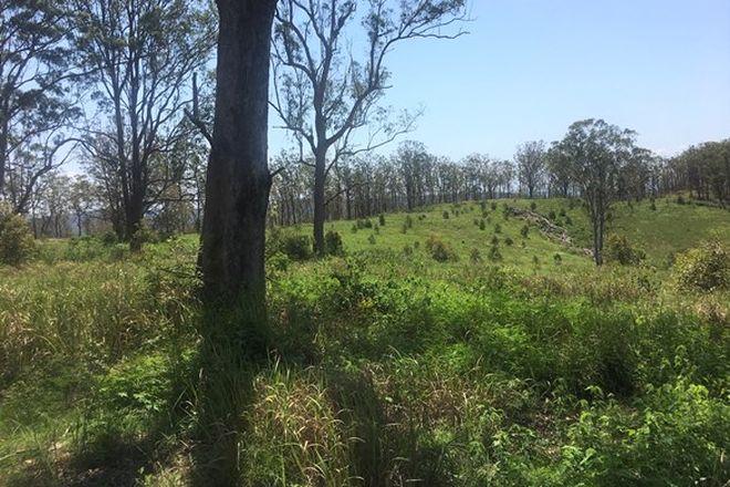 Picture of 702 Comboyne Road, BAGNOO NSW 2446