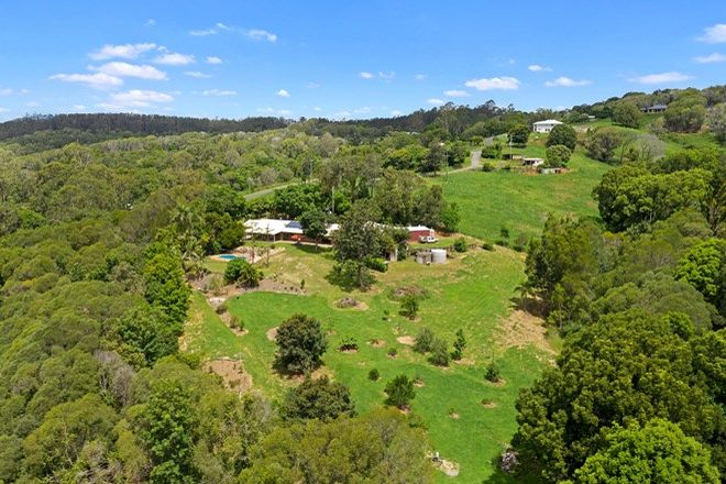 Picture of 14 Beechtree Road, BLACK MOUNTAIN QLD 4563
