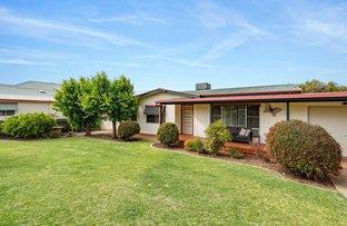 Picture of 16 Whitton Street, Narrandera NSW 2700