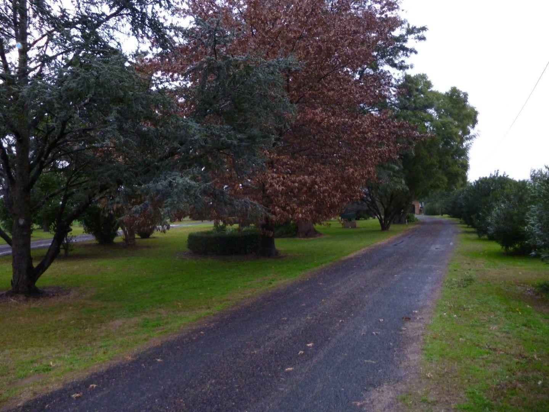 4367 Maitland Road, Singleton NSW 2330, Image 0