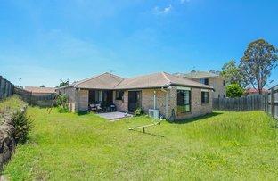 Picture of 17 Glentree Avenue, Upper Coomera QLD 4209