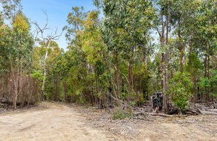 Picture of 520 MURCHISON SPUR ROAD, Reedy Creek VIC 3658