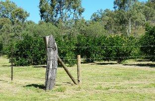 Hilltop, New Moonta QLD 4671