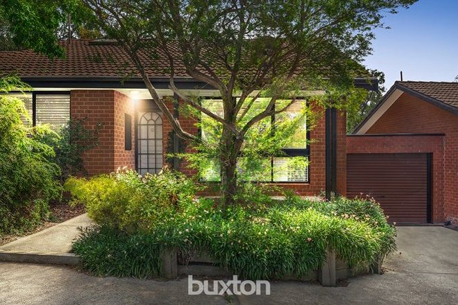 Picture of 12/36-52 Queens Parade, ASHWOOD VIC 3147