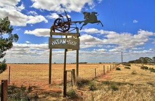 Picture of 1942 Karoonda Highway, Loxton SA 5333