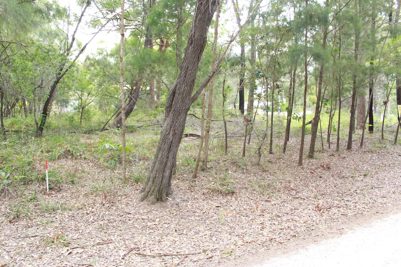 3 Acacia Court, Macleay Island QLD 4184, Image 1