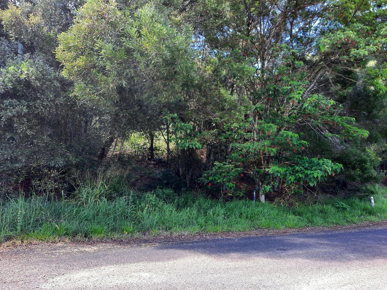 61 Bellview Drive, Ravenshoe QLD 4888, Image 0