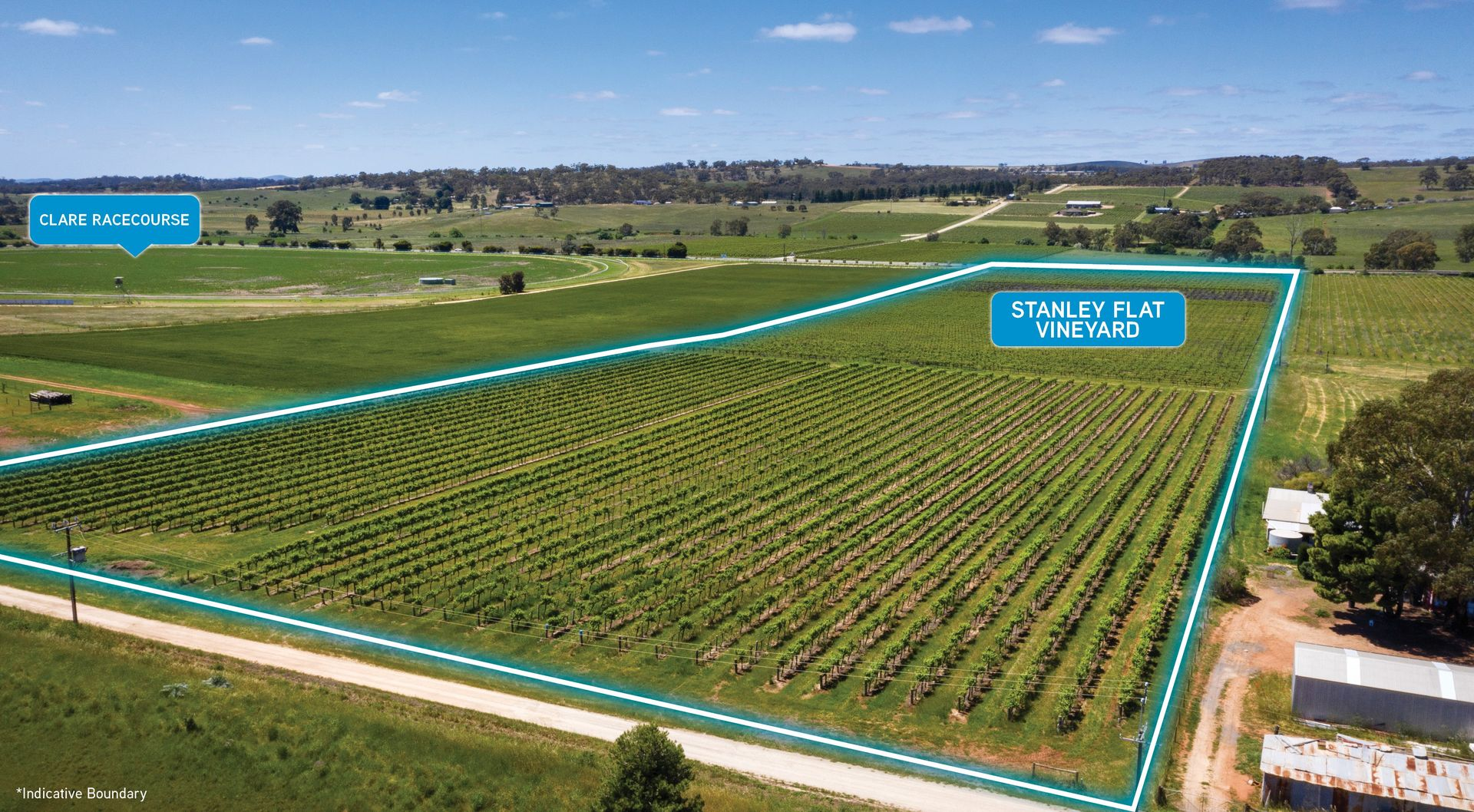 Stanley Flat & Noble Road Vineyards, Horrocks Highway, Stanley Flat SA 5453, Image 0