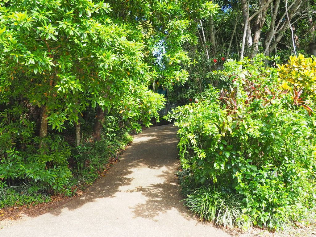 76 Cutten Street, Bingil Bay QLD 4852, Image 1