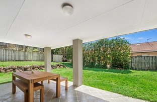 Picture of 3 Mountain Ash Circuit, Robina QLD 4226