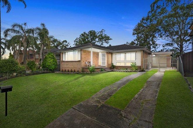Picture of 9 Kiama Street, GREYSTANES NSW 2145