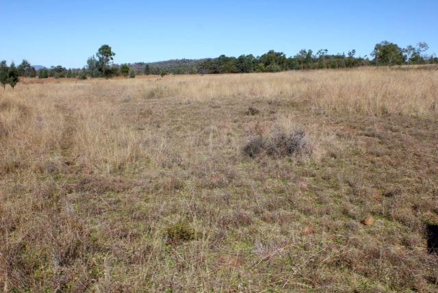 8432 Blackstump Way, Tambar Springs NSW 2381, Image 1