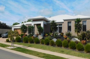 Picture of 2 Kite Place, Wodonga VIC 3690