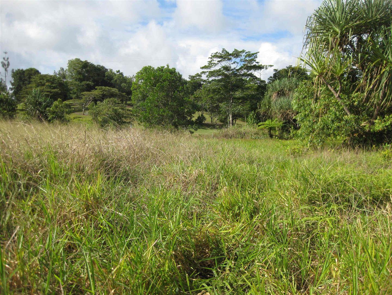 East Feluga QLD 4854, Image 2