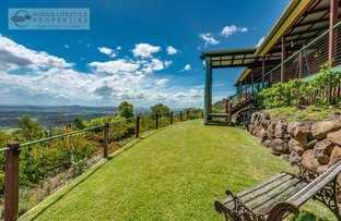 Picture of 1302 Lamington National Park Road, Canungra QLD 4275