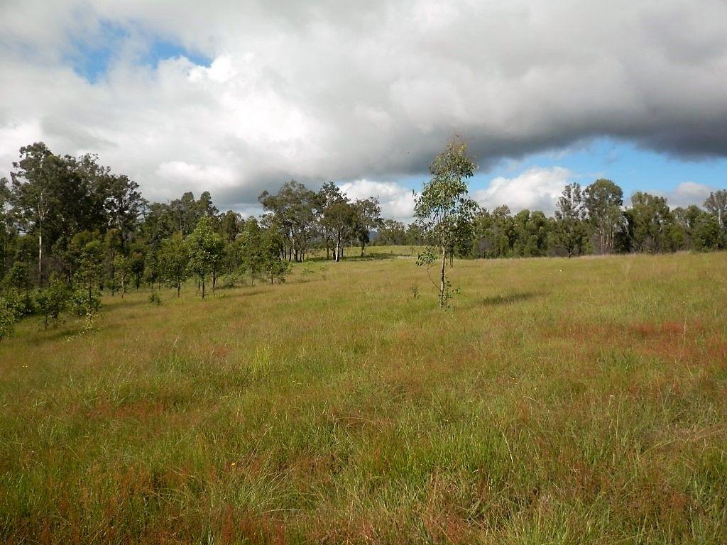 1354 Plains Station Road, Tabulam NSW 2469, Image 0