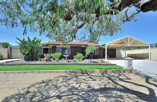 Picture of 20 Andrews Way, Herne Hill WA 6056