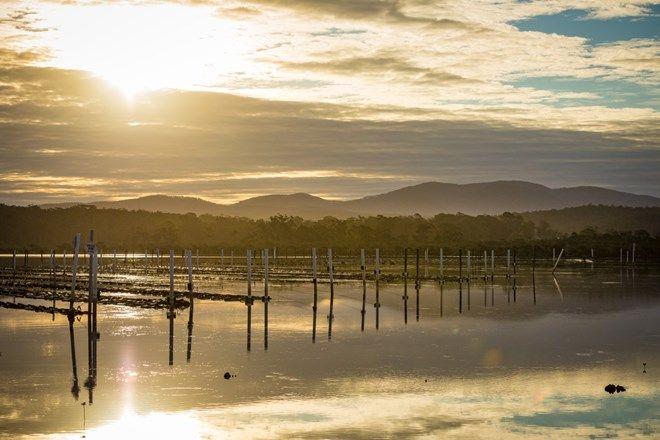 Picture of 149 Wapengo Lake Road, WAPENGO NSW 2550