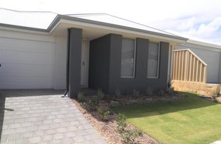Picture of 46 Billericay Circuit, Butler WA 6036