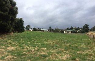 Picture of Lot 2 & 6 King Street, Scottsdale TAS 7260