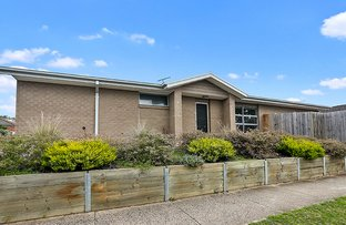 Picture of 1/23 Torquay Road, Belmont VIC 3216