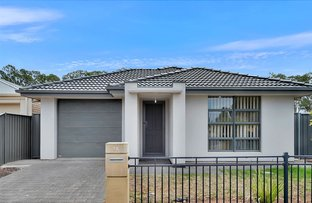 Picture of 25 Chateau Avenue, Andrews Farm SA 5114