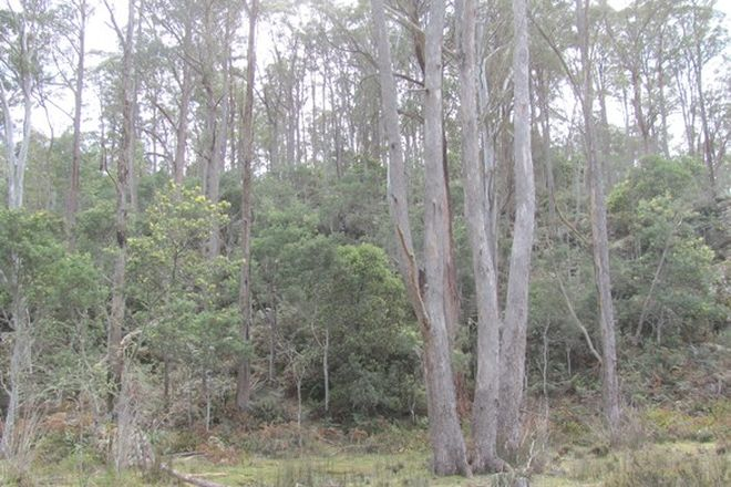 Picture of . Calders Gully Road, MANGANA TAS 7214
