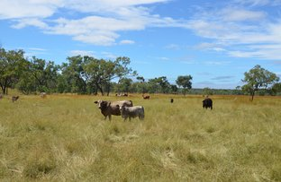 Picture of Lot 3 Rocky Springs Road, Mount Surprise QLD 4871