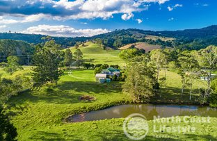 Picture of 343 Main Arm Road, Mullumbimby NSW 2482