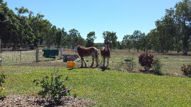1232 Woodstock Giru  Road, Mount Surround QLD 4809, Image 2