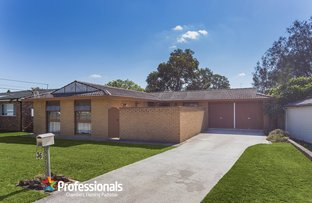 Picture of 36 Archibald Street, Padstow NSW 2211
