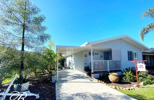 Picture of 145/88 Holdom Road, Karuah NSW 2324