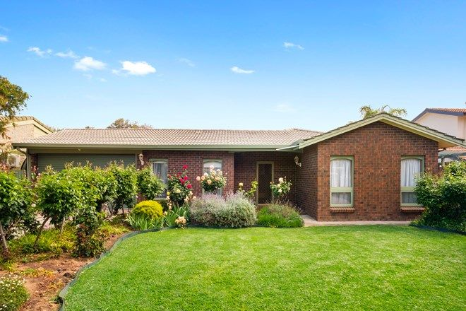Picture of 40 Parsons Street, MARION SA 5043